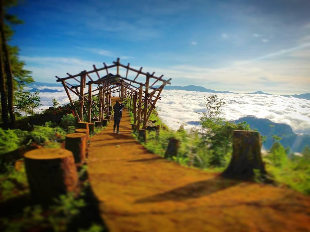 Tempat Wisata Toraja Terbaru - Tempat Wisata Indonesia