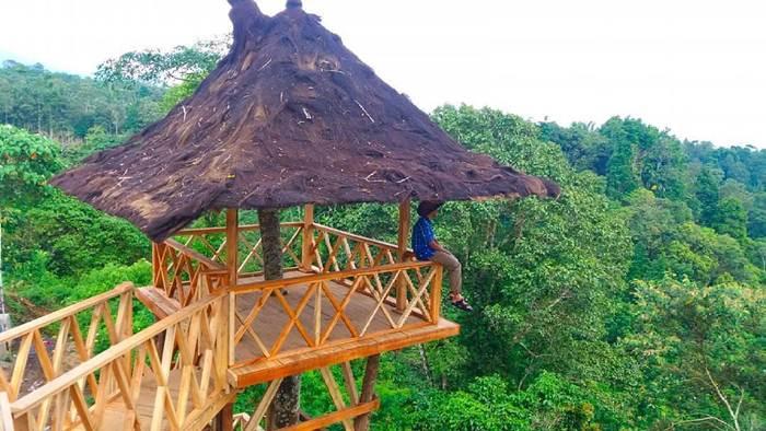 50 Tempat Wisata Di Banyuwangi Terbaru Yang Lagi Hits 2019