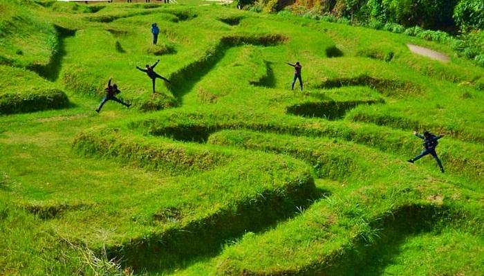 taman labyrin Ganesha H Equestrian lembang
