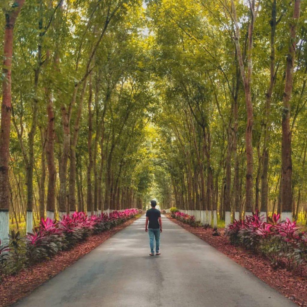 37 Tempat Wisata Di Jember Terbaru Yang Lagi Hits 2019